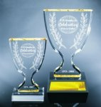 Trophy Cup Golf Awards