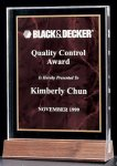 Acrylic Award with a Ruby Marble Center Marble Awards